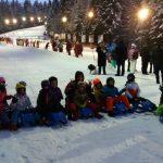 sanius grupele de schi